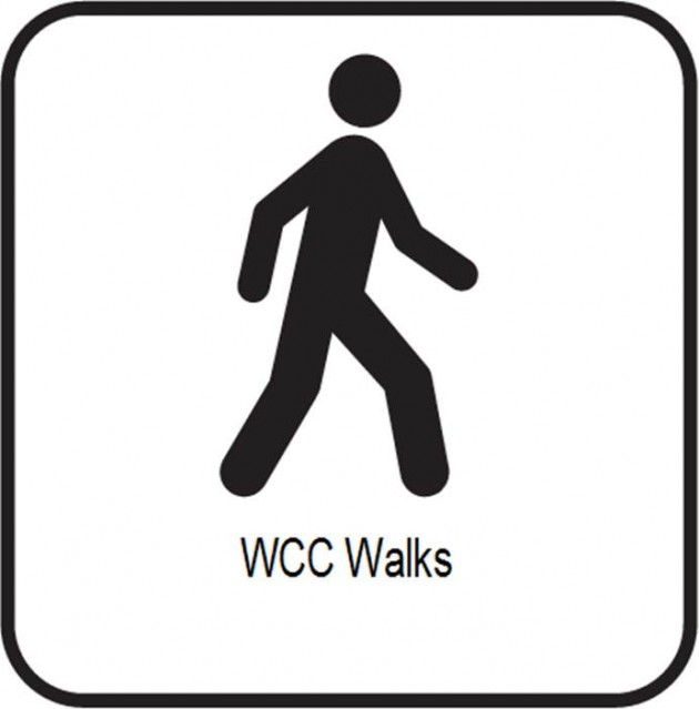 Walks icon